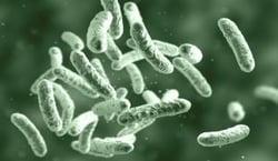 iStock-1133857992_microbe_resize2